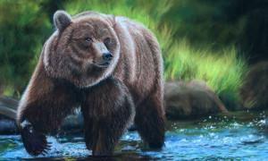 Чертог Медведя в славянском гороскопе