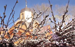 Вербное воскресенье и символ верба: значение праздника и оберега