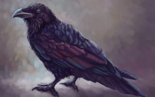 Чертог Ворона в славянском гороскопе