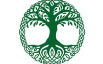 Оберег Древо Жизни и значение символа