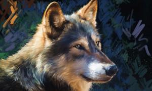Чертог Волка в славянском гороскопе