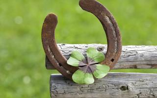 Символы счастья и удачи: талисманы народов мира